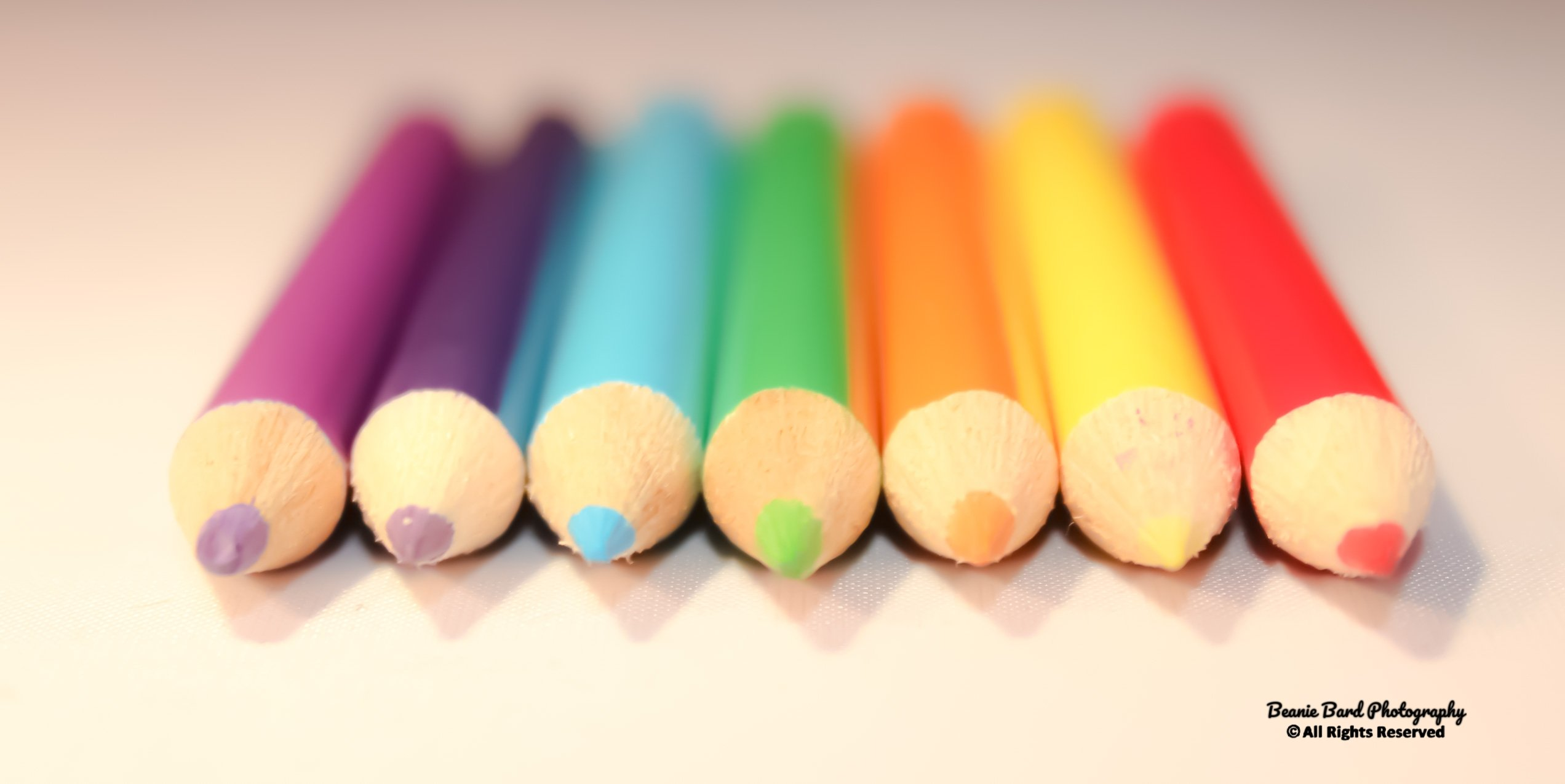A line of coloured pencils on a white background