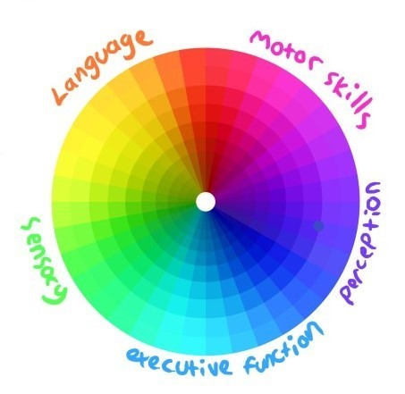 A circular diagram separated into  five different coloured segments labelled perception, executive function, sensory, language and motor skills.