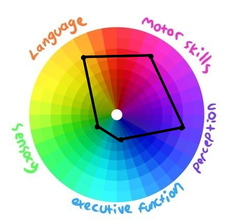 A circular diagram separated into  five different coloured segments labelled perception, executive function, sensory, language and motor skills. A dot has been marked at different levels on each segment to represent the person's level of ability in that region. The dots have been joined to form a five sided irregular shape